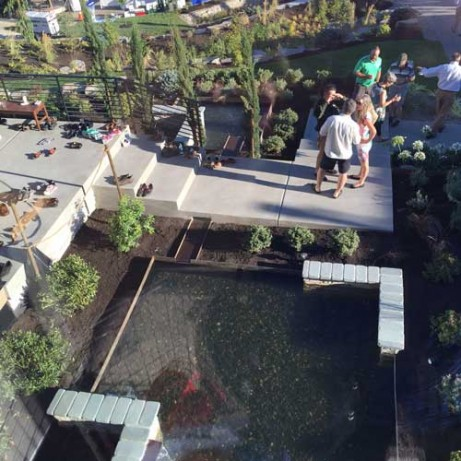 water feature from above